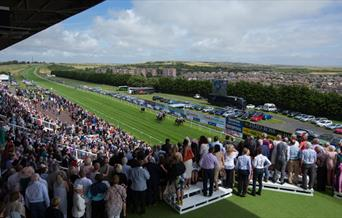 panoramic view of the racecourse from spectators area
