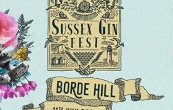 Sussex Gin Fest 2020