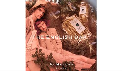 Discover Jo Malone London's The English Oak