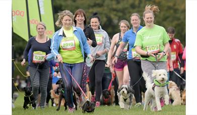 People running with their dogs at Dog Jog event. Photo by Lesley Martin
